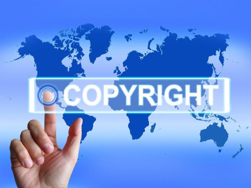 Enforcement of Copyright Protection After An Online Infringement